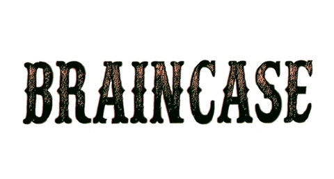 Braincase_El Reportero Bolinga